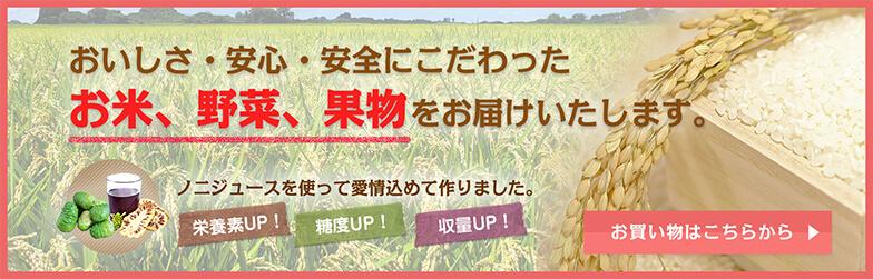 おいしさ・安心・安全にこだわったお米、野菜、果物をお届けいたします。